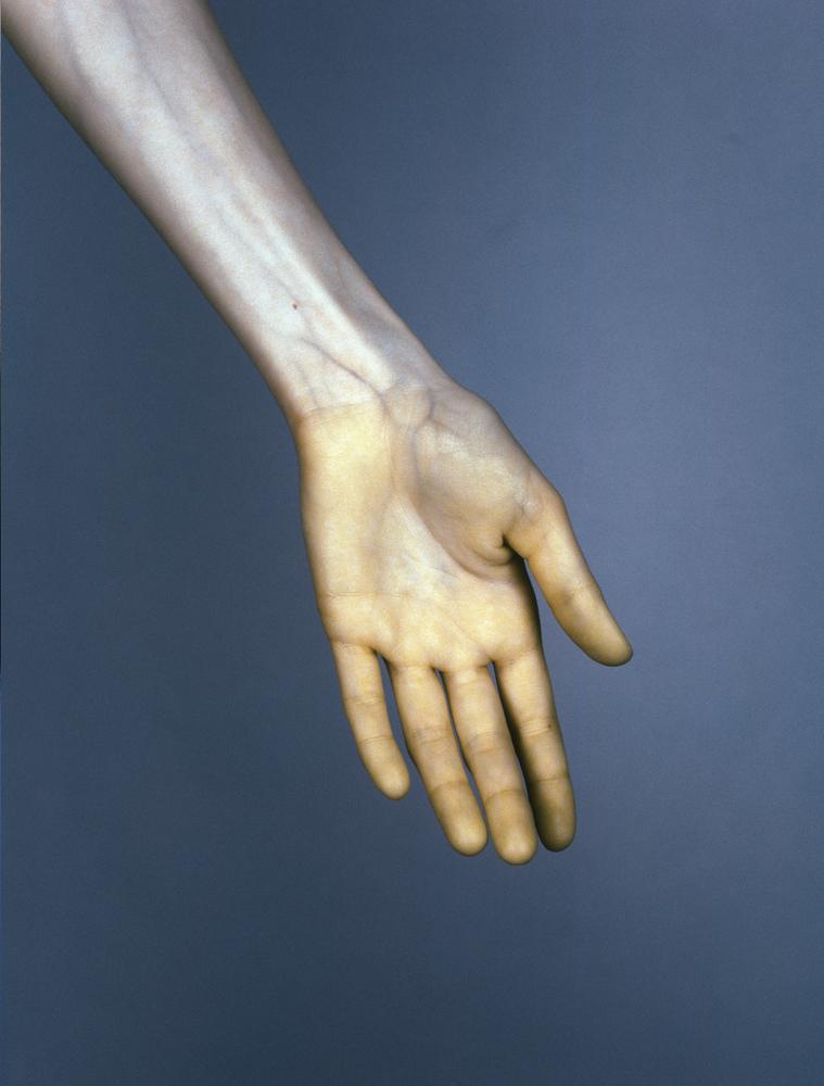 05_TheVein_hand
