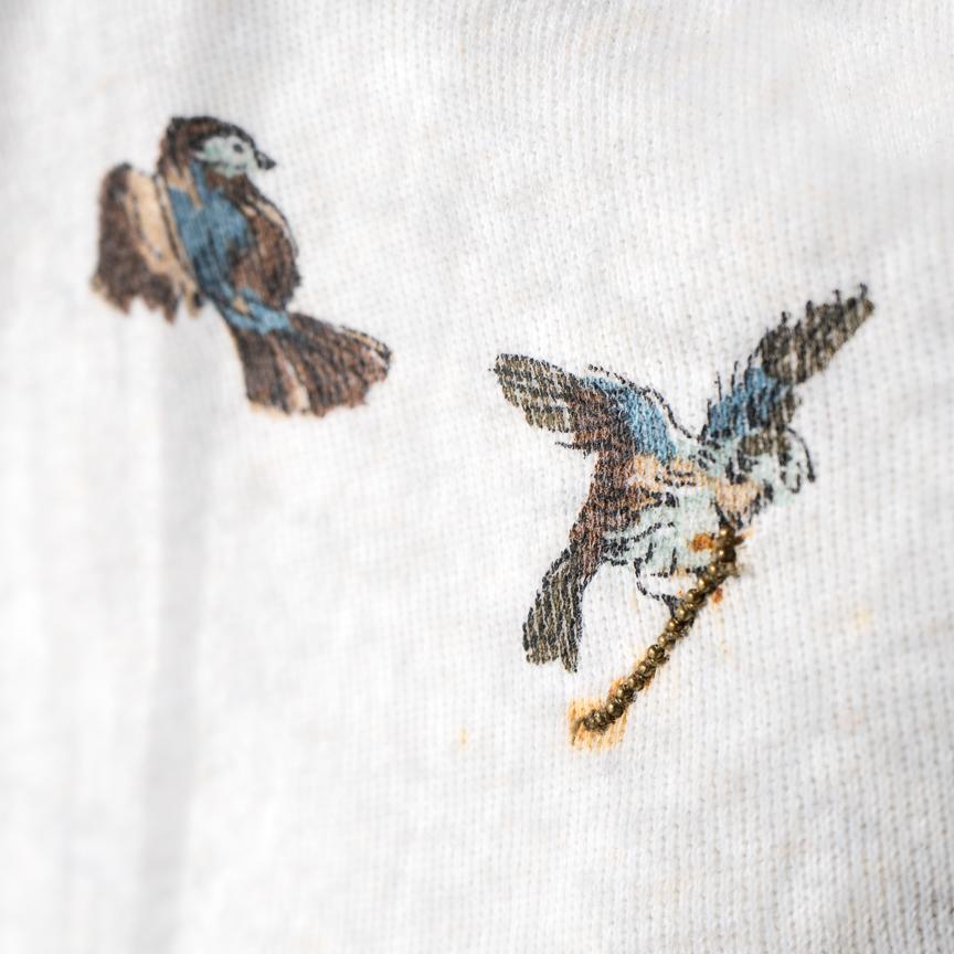 (9) Unitled (birds)