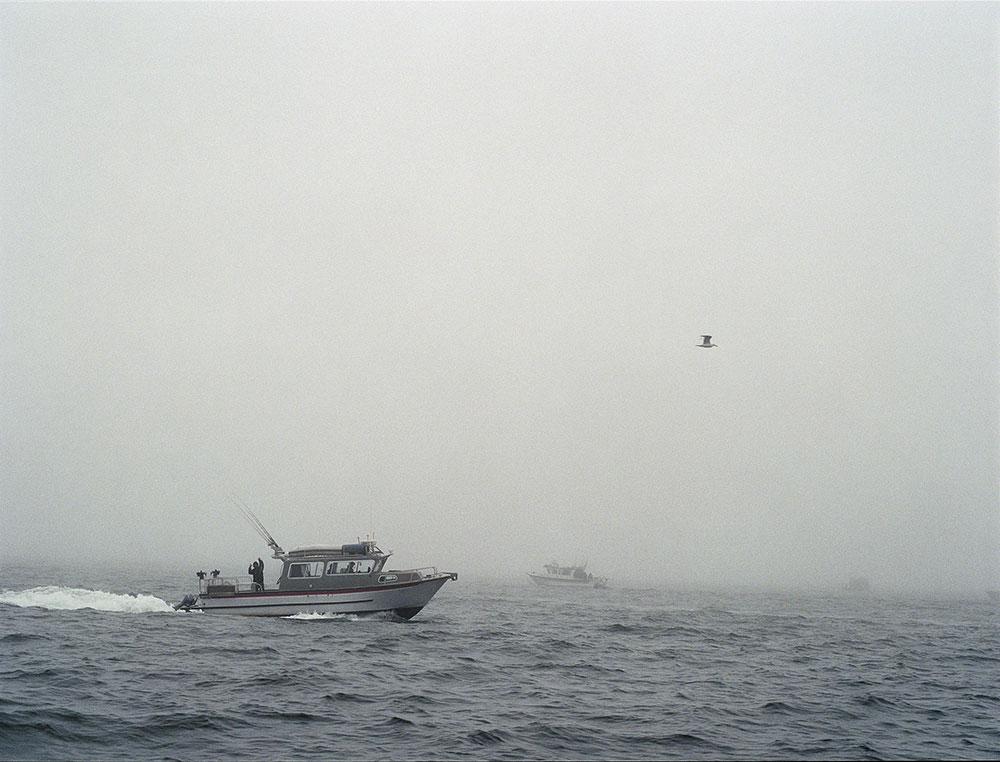 Kaur_Fog