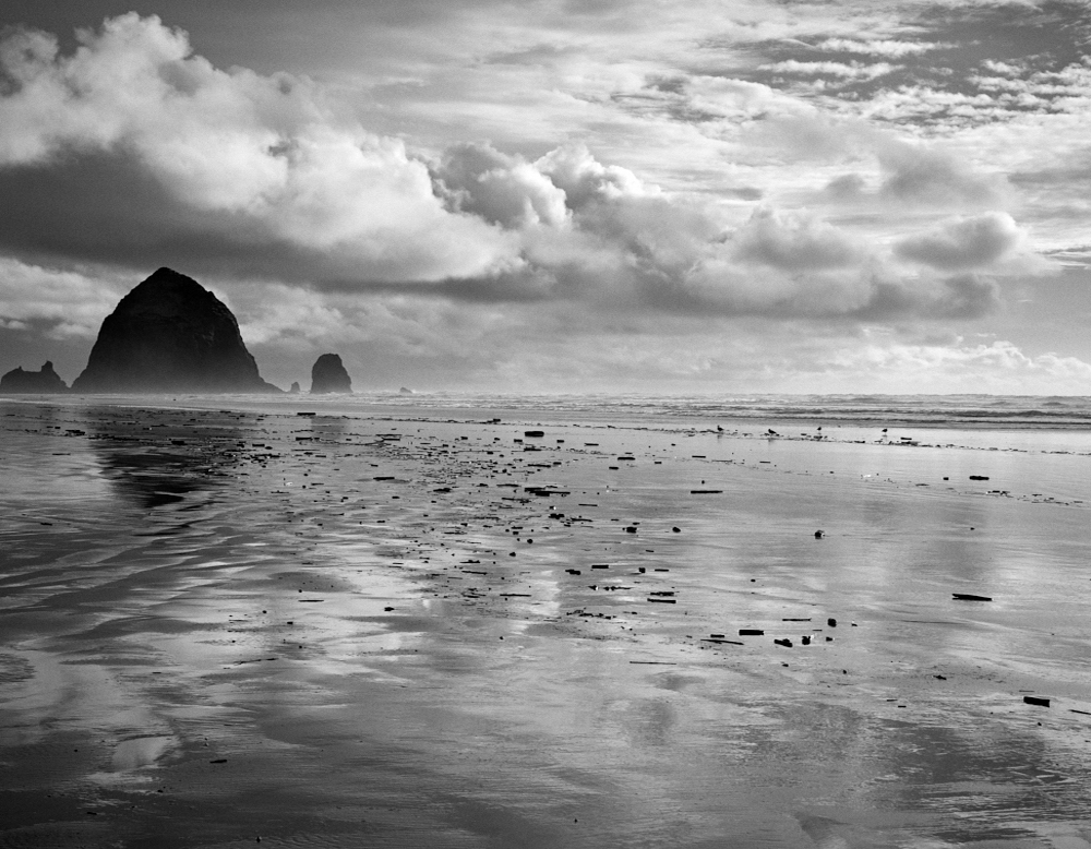 © Paul Stetzer, At the Edge, Cannon Beach OR