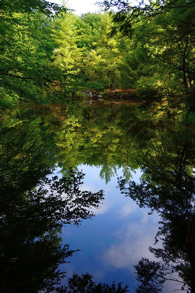 (c)VirginiaMallon,MillriftRevisited,Pennsylvania,www.VirginiaMallon.com