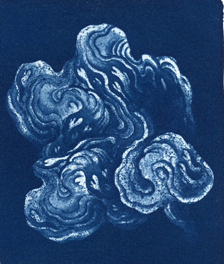 Cloud_Cyanotype 109