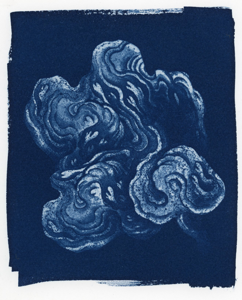 Cloud_Cyanotype106