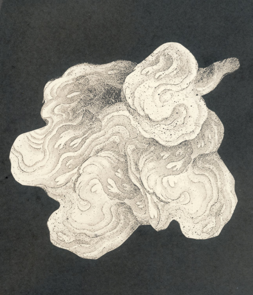 Salted Paper Print_Cloud111