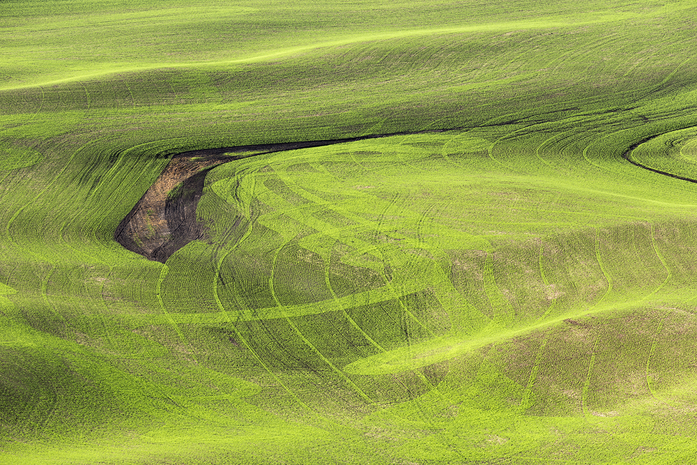 Plow Patterns Visable from Steptoe Butte. WA