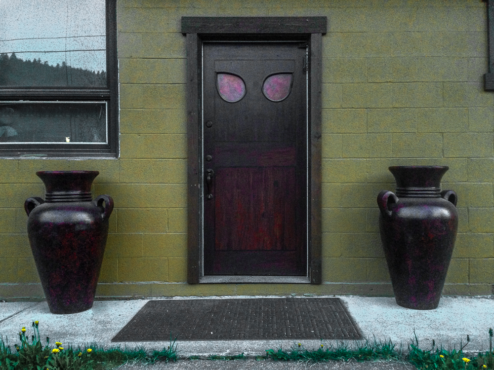 Door with cat eyes
