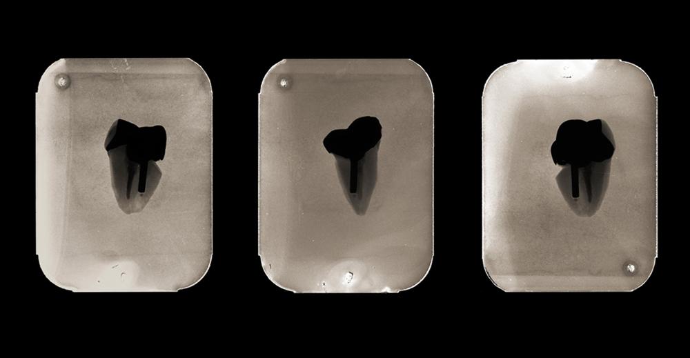 X post facto (5.5-5.7), three archival pigment prints, 2009.
