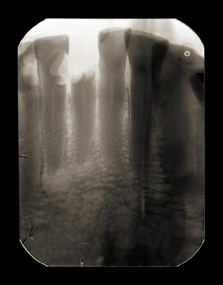 X post facto (11.3), archival pigment print, 2009.