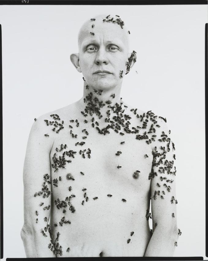 05_1987-Avedon-Beekeeper
