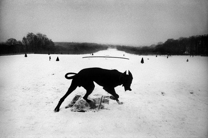 06_1987-Koudelka-Parc de Sceaux