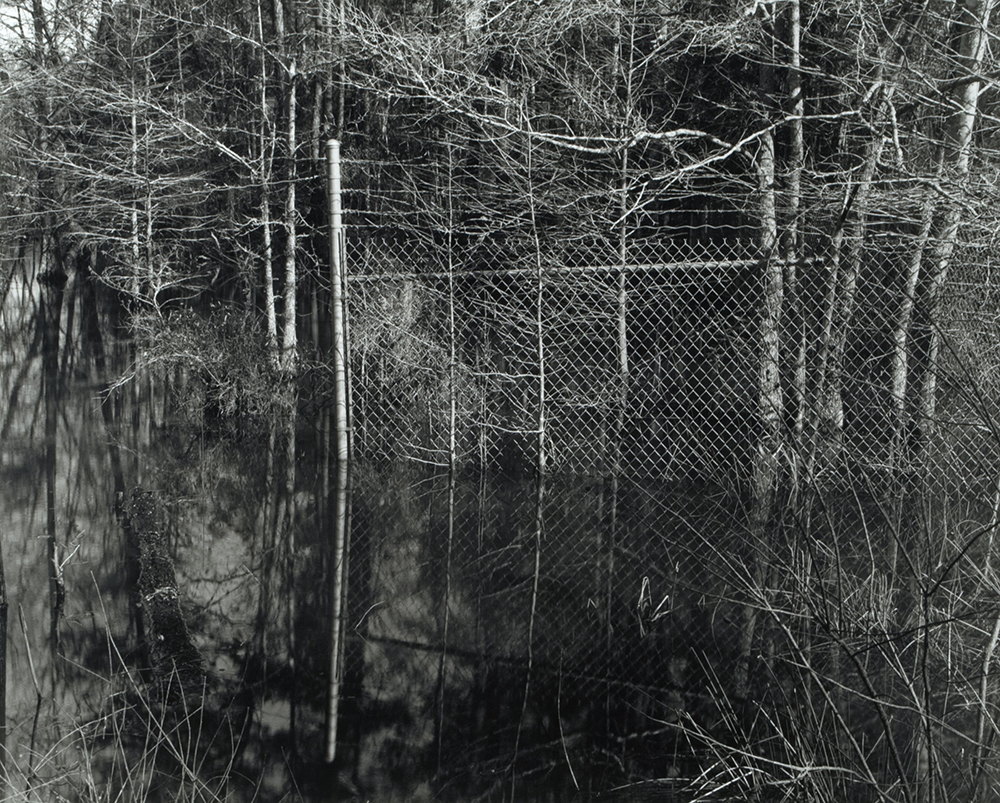 10_Marsh fence barbed wire_Beyond the Plantations