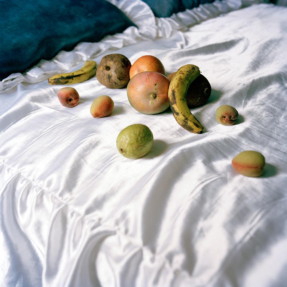2 Bounty_Casa de fruta y pan_2014_1