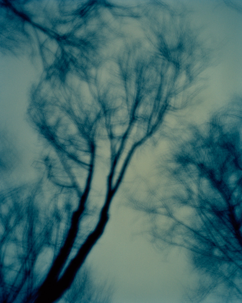 Night Wind, New Jersey, 2009. From the series, Encounters. Photo © Minny Lee.