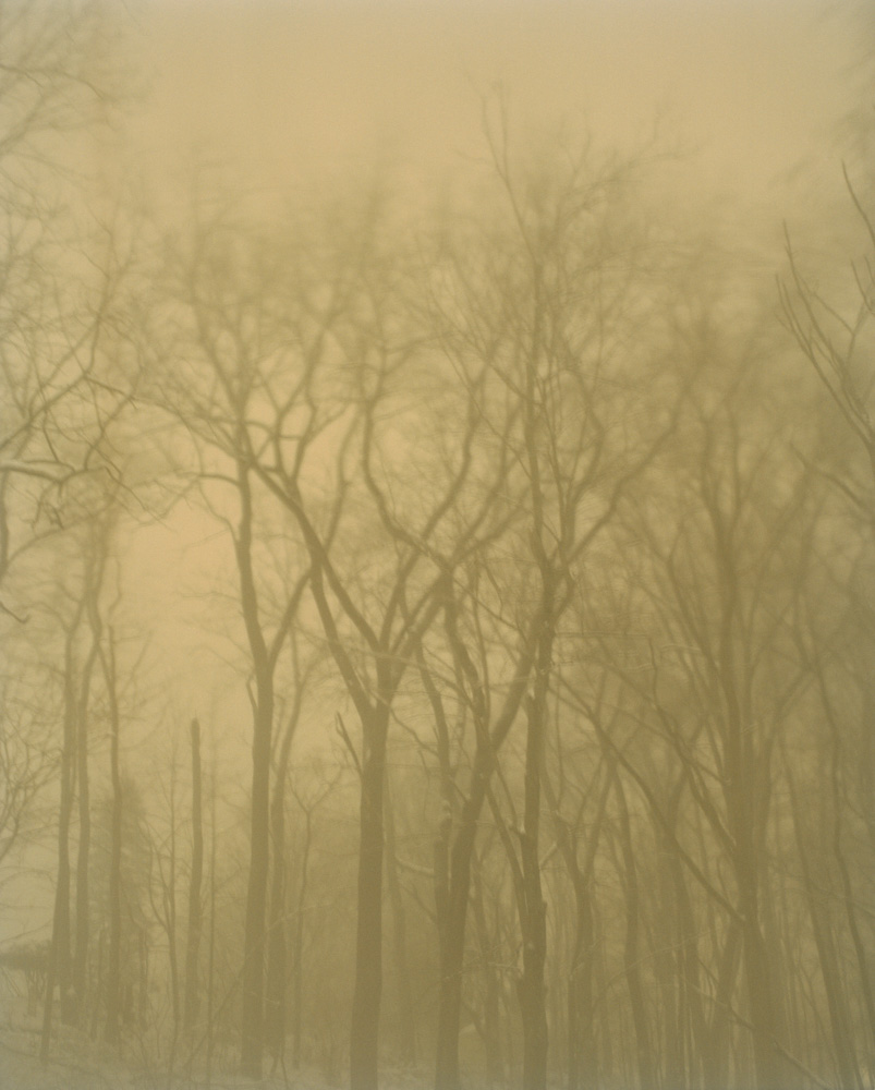 In the Snow Storm, New Jersey, 2010. From the series, Encounters. Photo © Minny Lee.