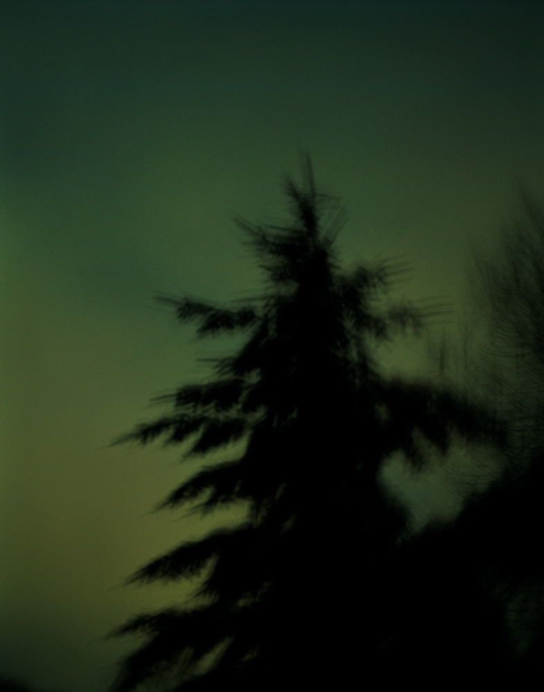 Evergreen, New Jersey, 2008. From the series, Encounters.  Photo © Minny Lee.