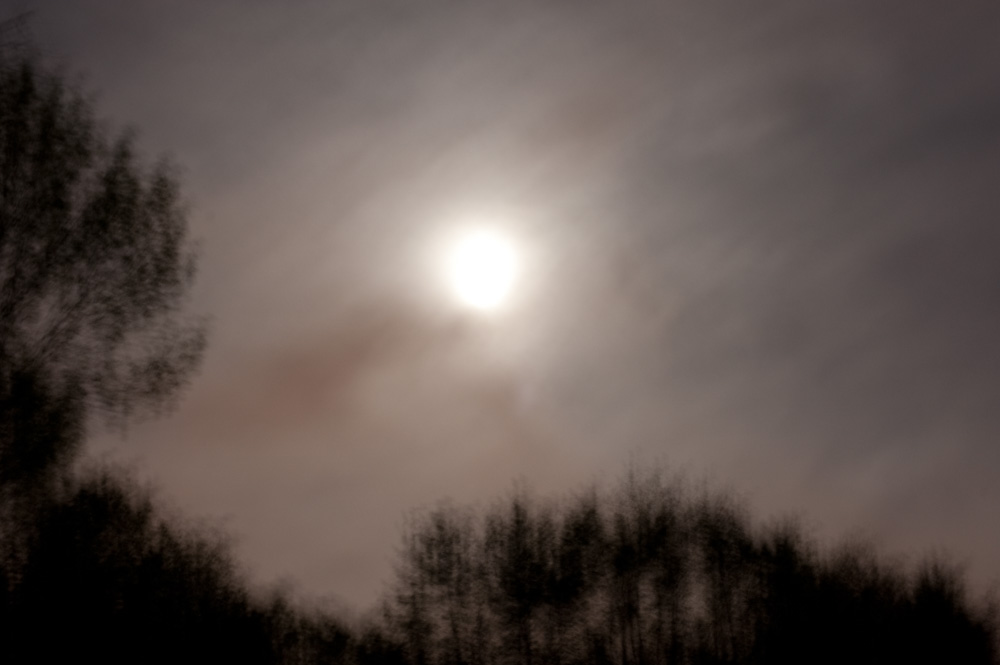 Full Moon, New Jersey, 2009. From the series, Encounters. Photo © Minny Lee.
