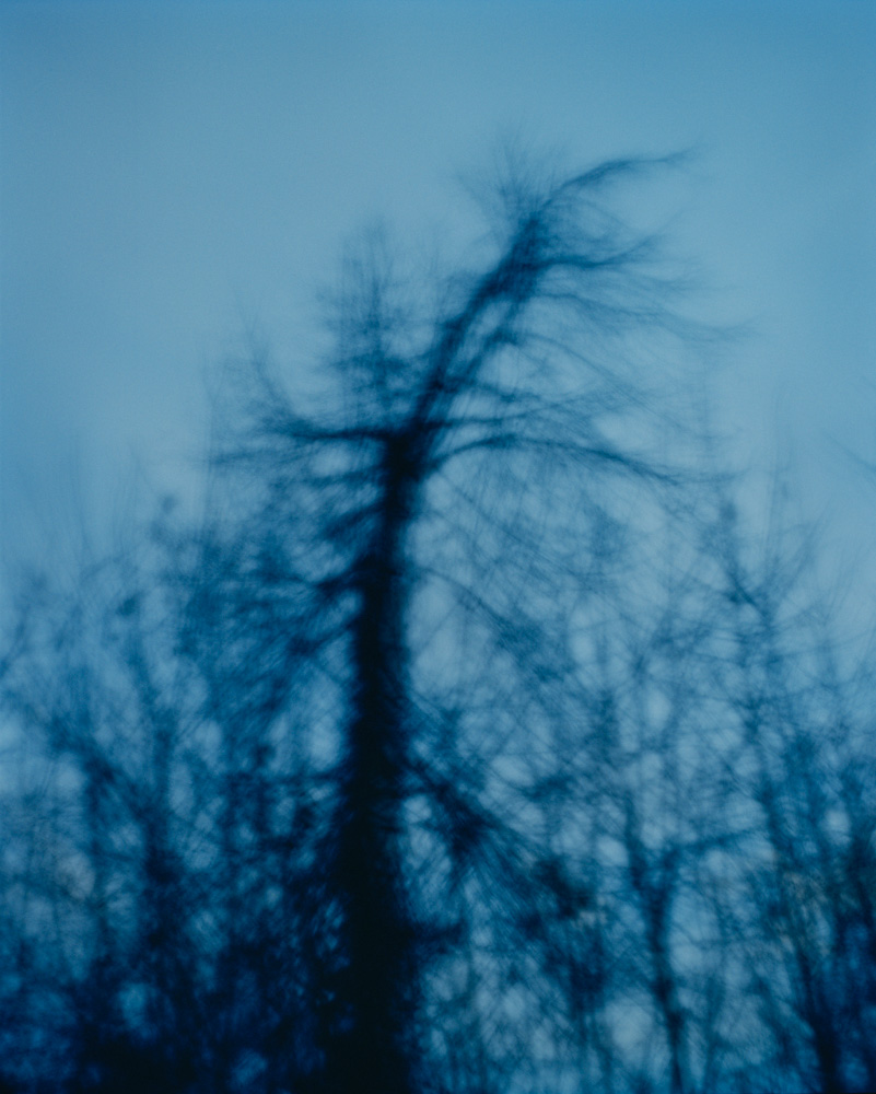 Twilight, Vincennes, France, 2010. From the series, Encounters. Photo © Minny Lee.
