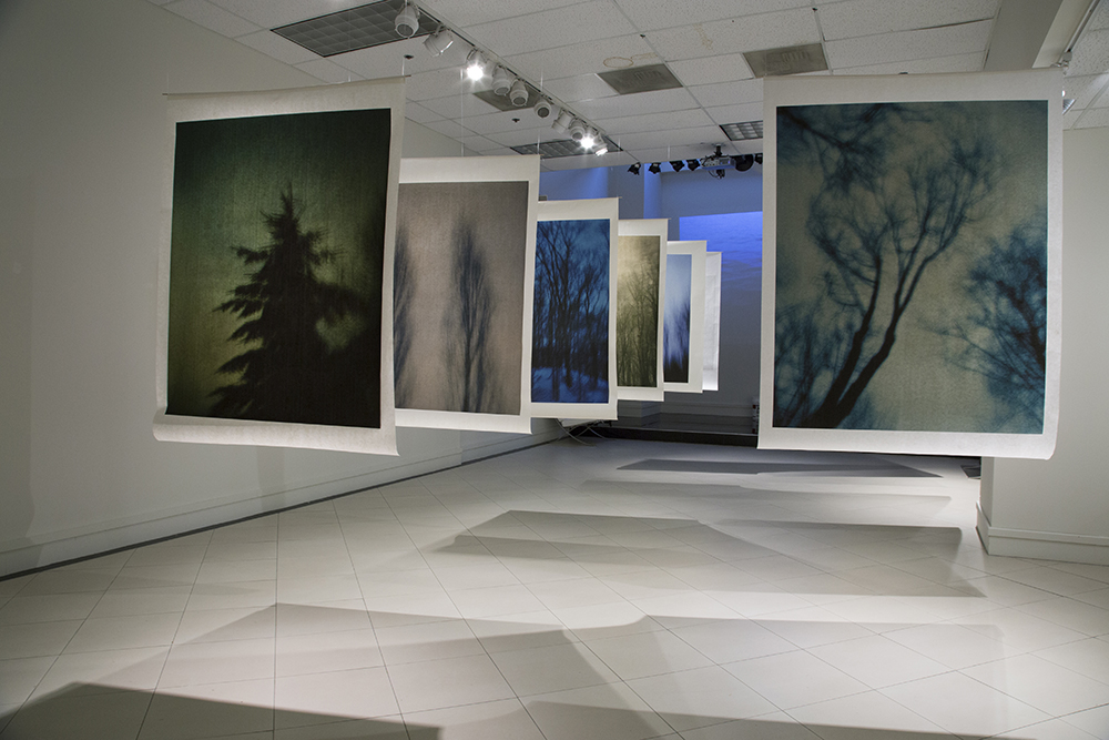 """Minny Lee: Nightwalker"" at Nabi Museum of the Arts. Oct 4- Nov 16, 2014. Installation Photo by Minny Lee."