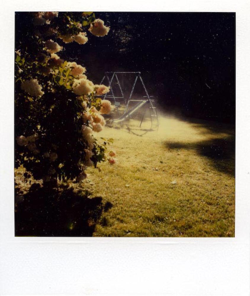 Polaroid_5