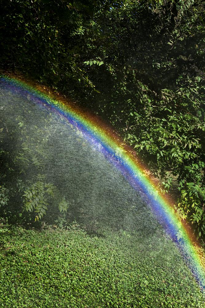 Skinner_Rainbow
