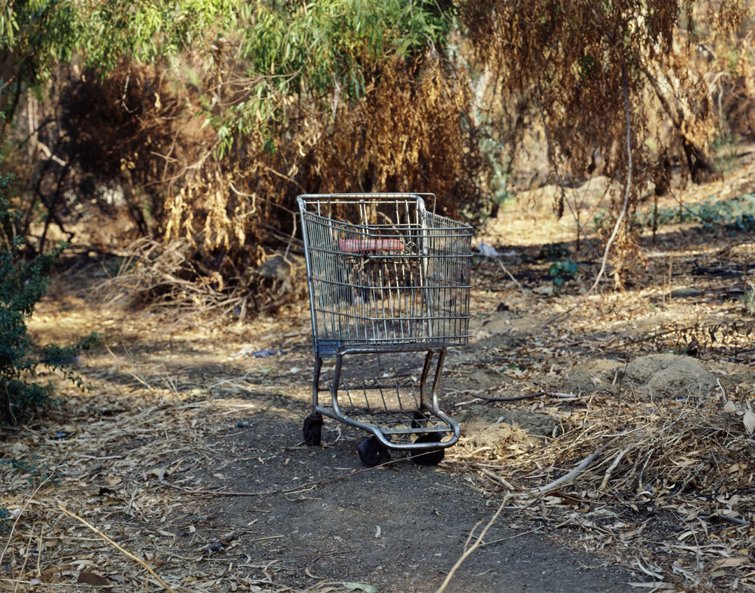 Landscapes for the Homeless #64, 1988 - LR