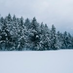 01_SNOWY_LAKE∏AmaniWillett