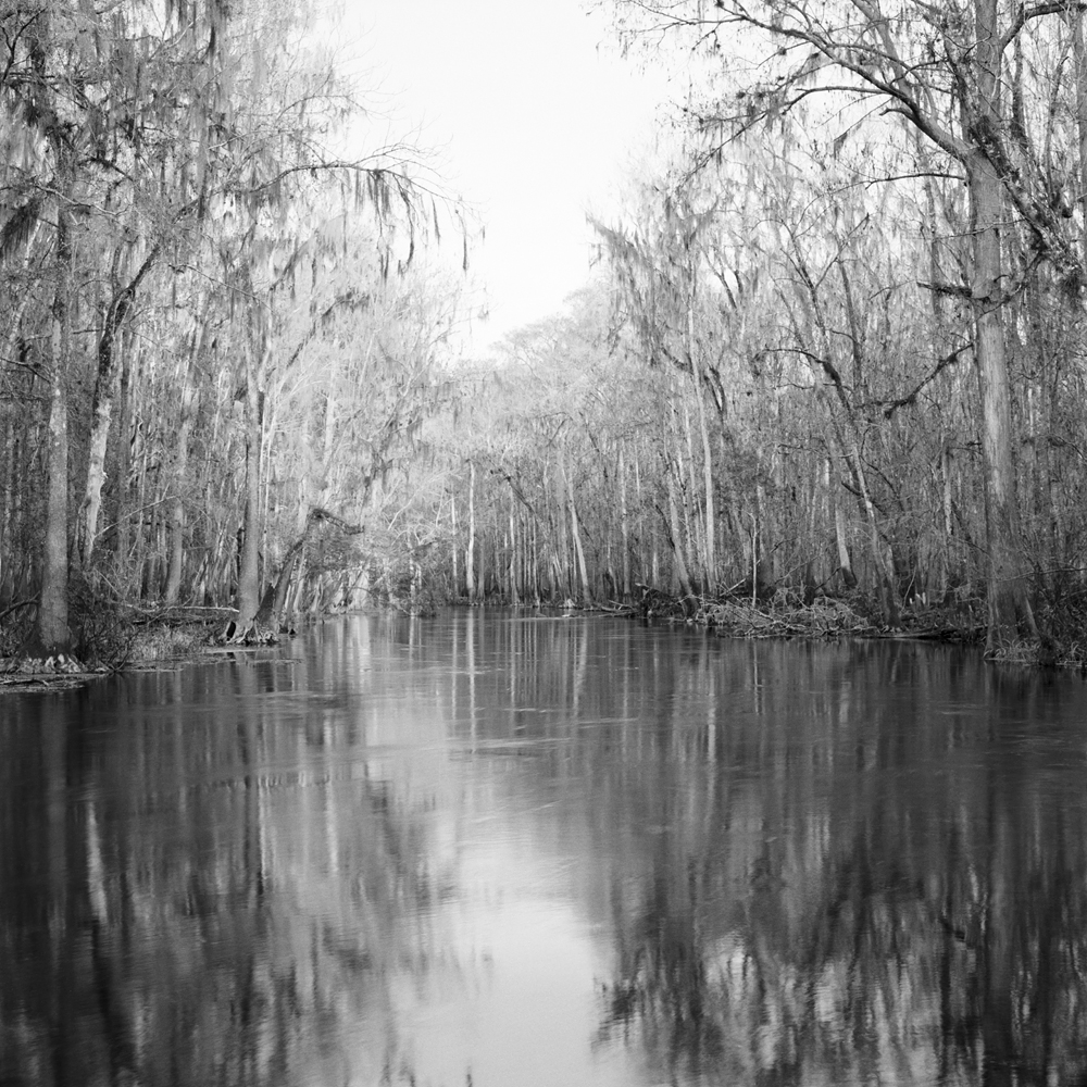 #7_Winter, Ichetucknee River