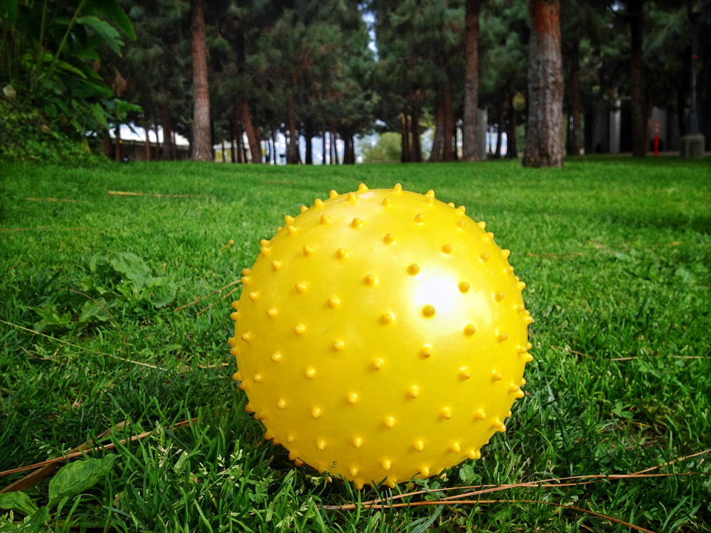 6) Sometimes the Sun Pretends to be a Ball Resting in the Grass