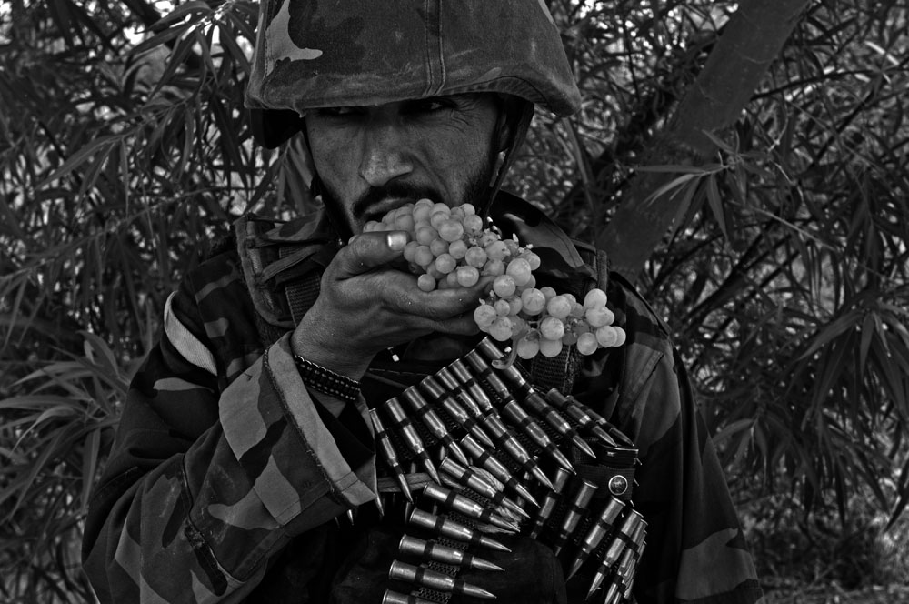 An Afghan soldier eats grapes during a patrol through the agricultural District of Zhari, Kandahar, Afghanistan. (Credit Image: © Louie Palu/ZUMA Press) FROM THE BOOK FRONT TOWARDS ENEMY. USE RESTRICTED TO BOOK REVIEWS ONLY