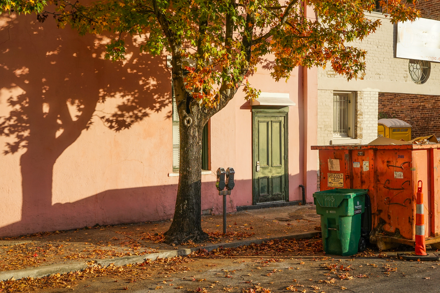 Fall Scene, New Orleans, 2015 from AMERICOLOR series