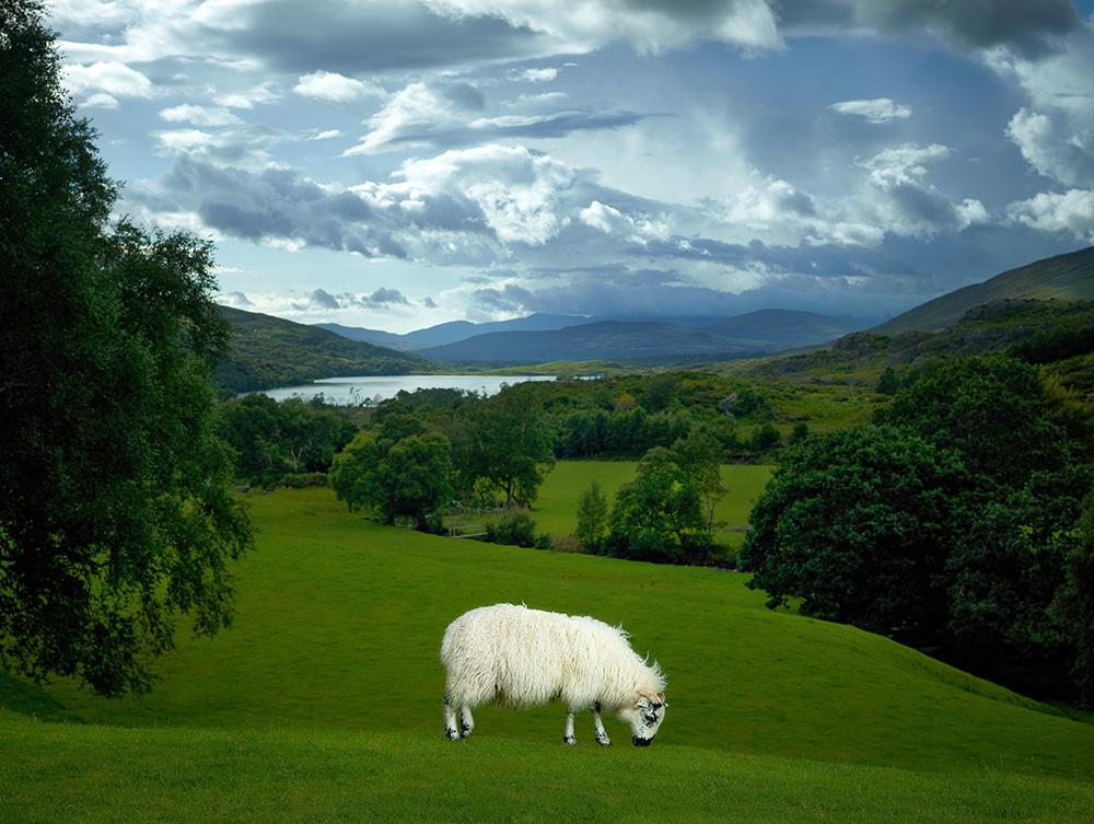 Quigley, County Kerry, Ireland