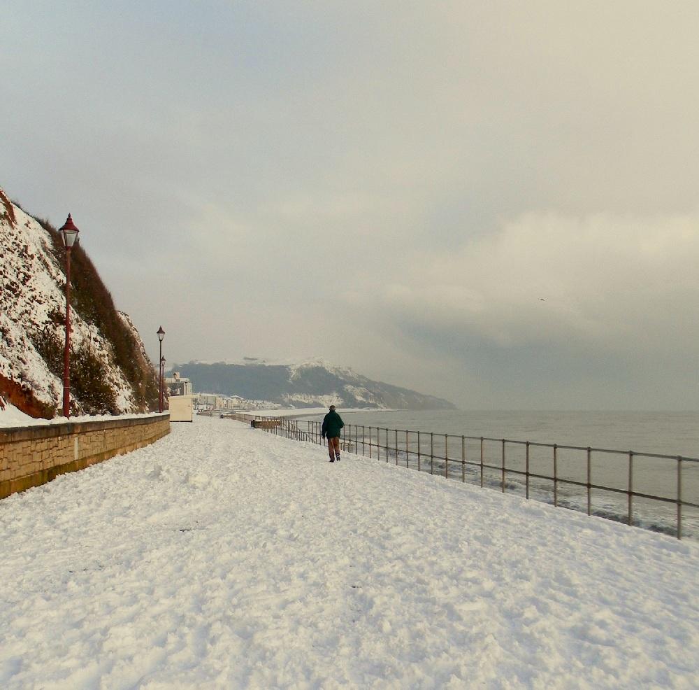 SELDOM SEEN SEATON SNOW