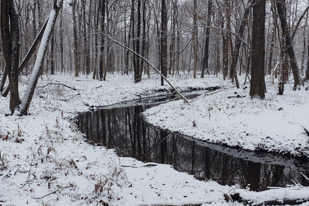 stream of reflection_1