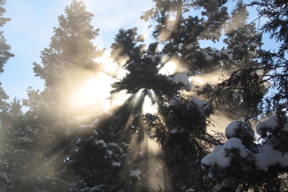 t_carr_sun_and_snow