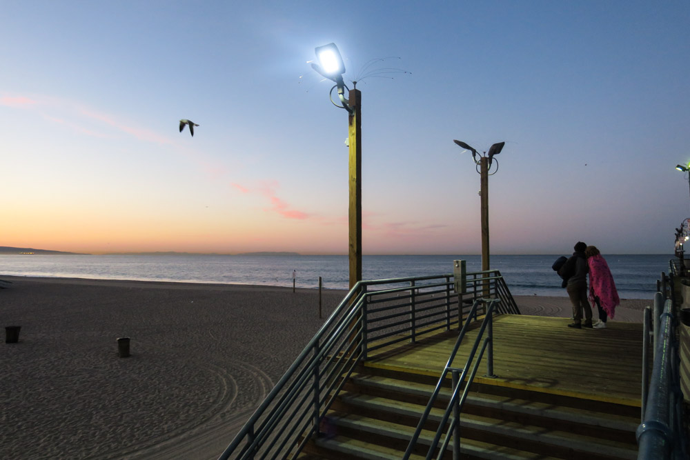 Lemke_Patty_Santa_Monica_CA (1 of 1) (1)