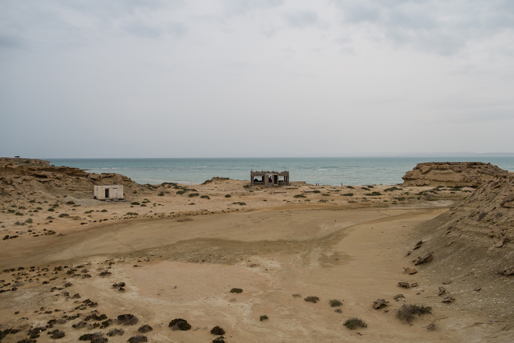 Hamed Farhangi 06