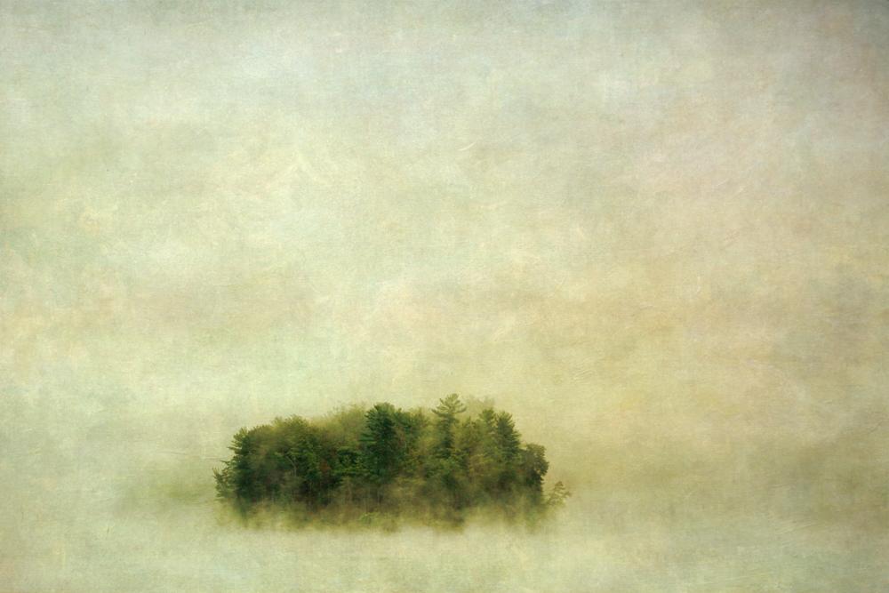 wendi-schneider-island