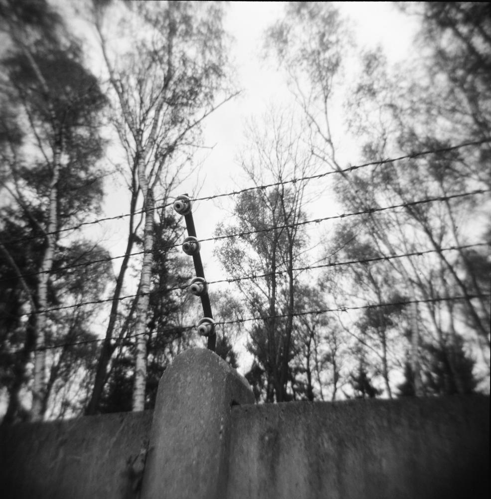 06_Hannah_Kozak_Dachau fence, trees