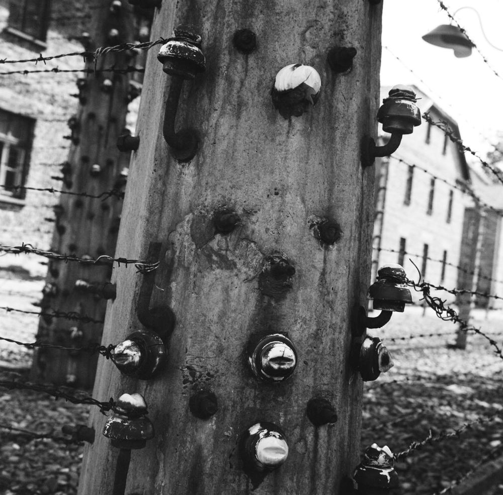 09_Hannah_Kozak_Auschwitz-Electric-Fence