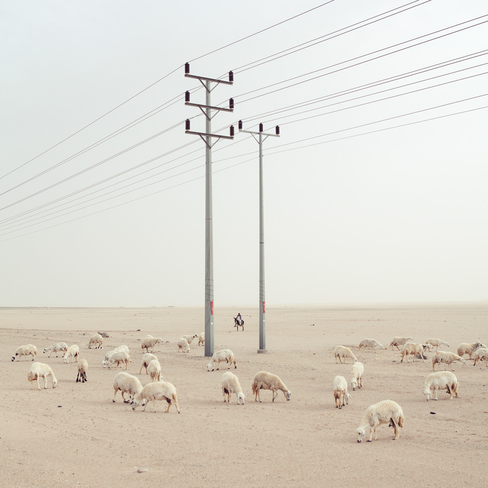 Roger Grass- Mekka region, Kingdom of Saudi Arabia 2010 (Merit)