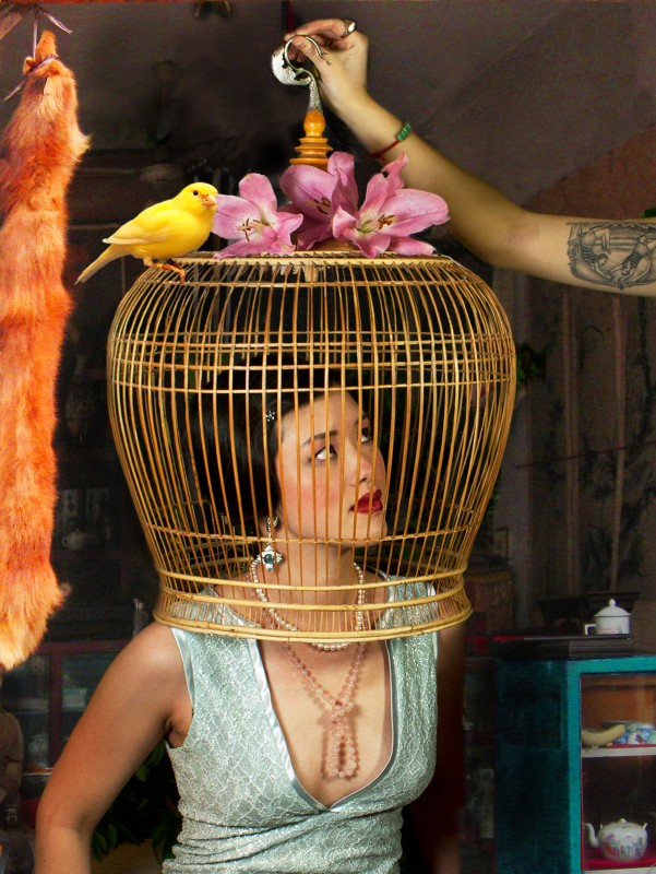 birdcage-e1362806010627