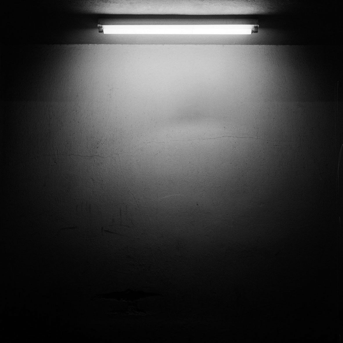 Fluoresencia