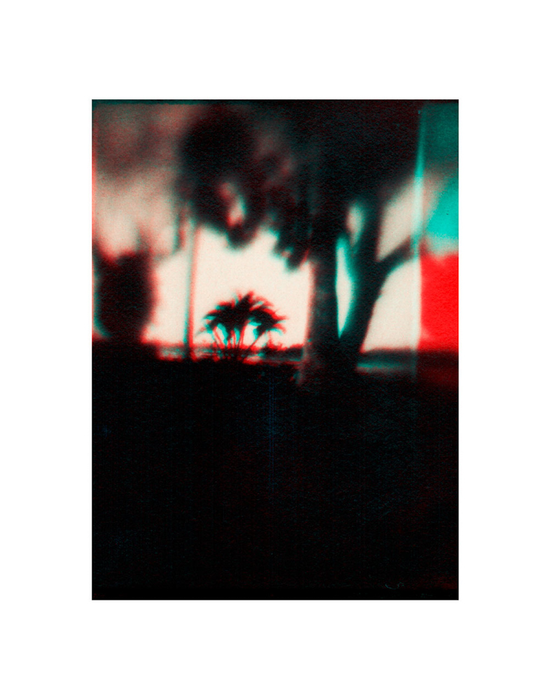 THE_CARDINAL_DIRECTIONS-11