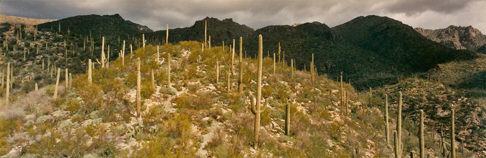 17- Arizona, 1998