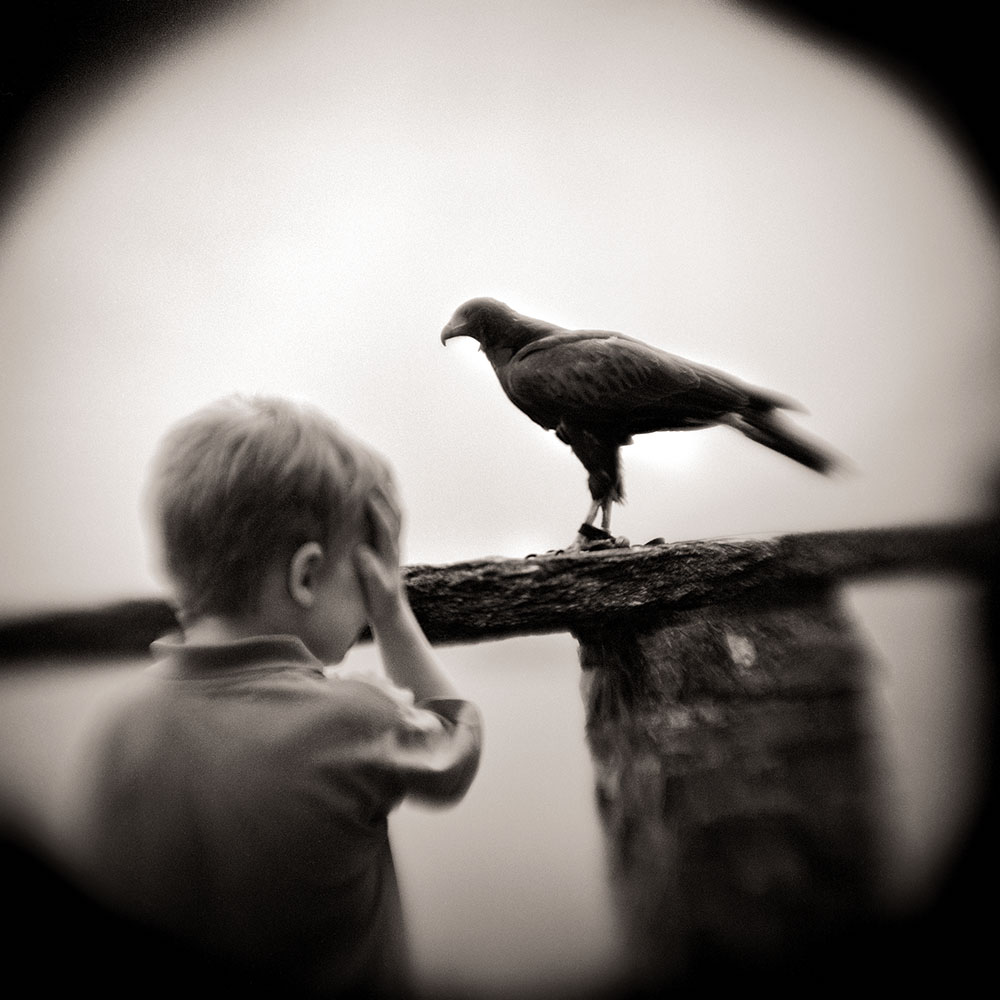 BOY AND HAWK 2005