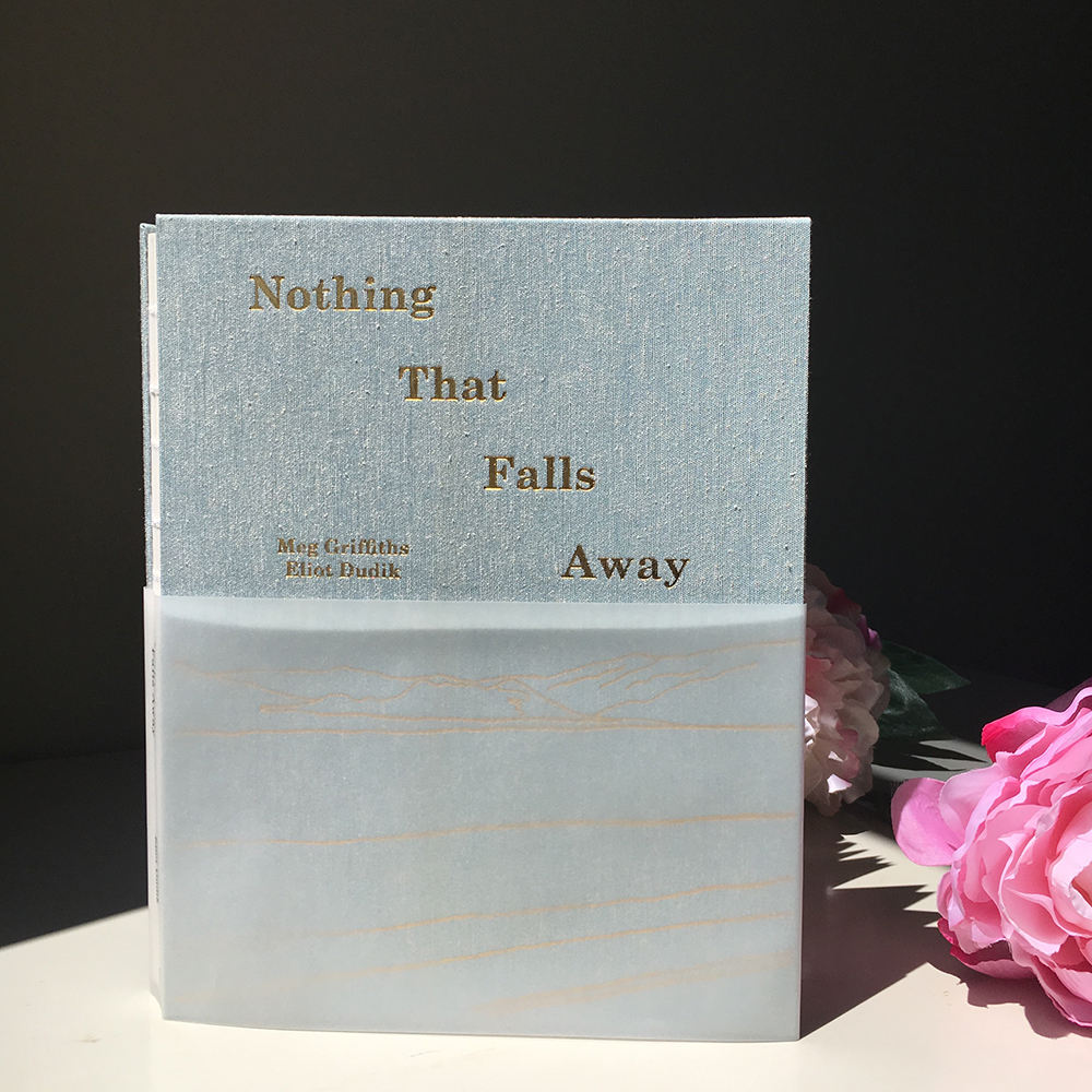 Nothing That Falls Away Book Shot