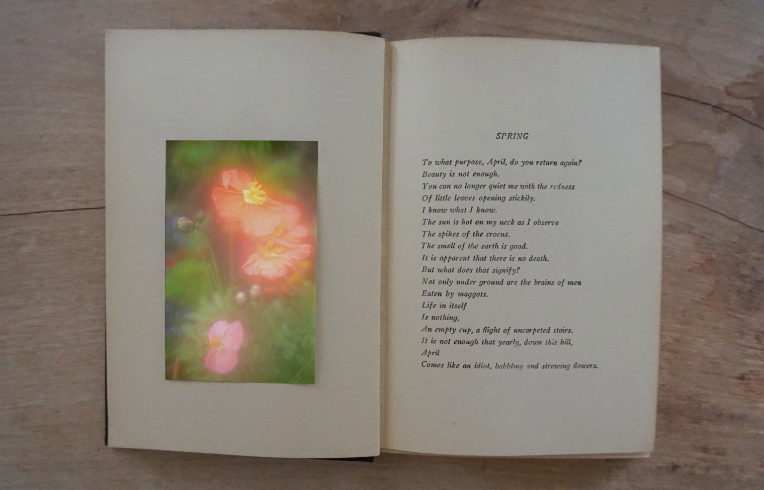 The Autumns of Spring-Book-1
