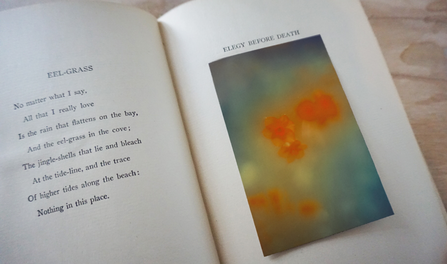 The Autumns of Spring-Book-2