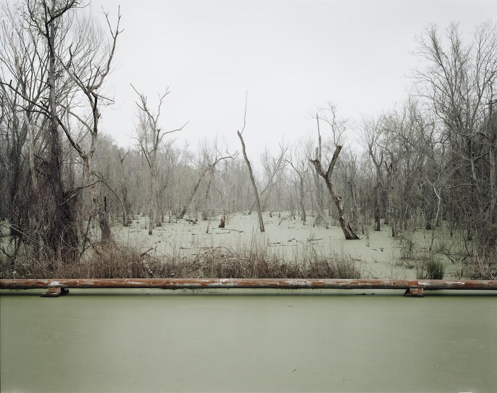Swamp and Pipeline, Geismar, Louisiana, 1998, from Petrochemical America, photographs by Richard Misrach, Ecological Atlas by Kate Orff (Aperture 2012)