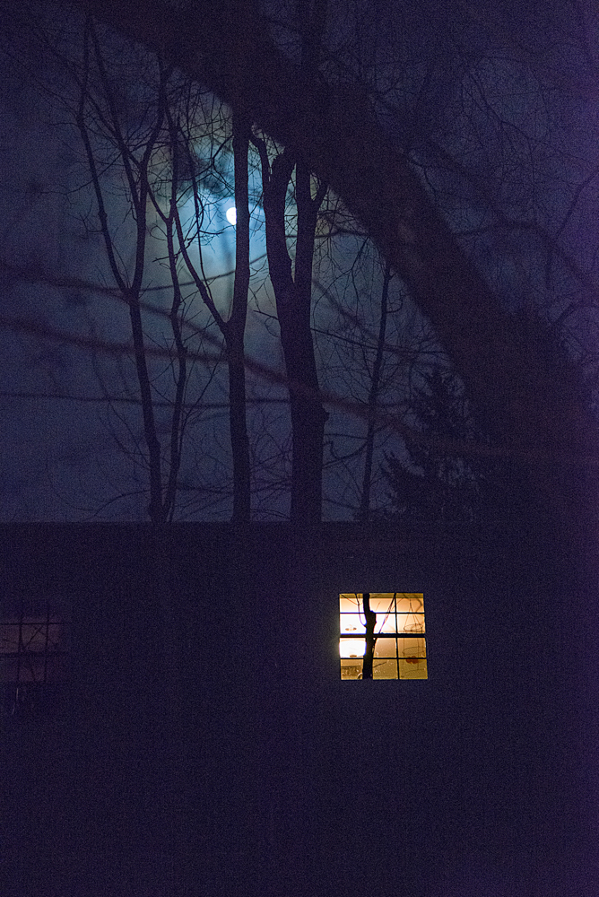 ©Daryl-AnnSaunders__WinterMoon1__DAS3156